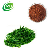 Factory manufacuturer 100% pure natural green tea extract