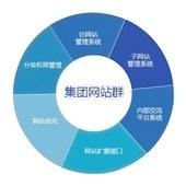 Website group development