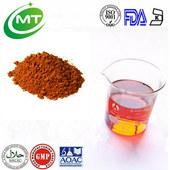 ISO factory good water solubility instant black tea extract